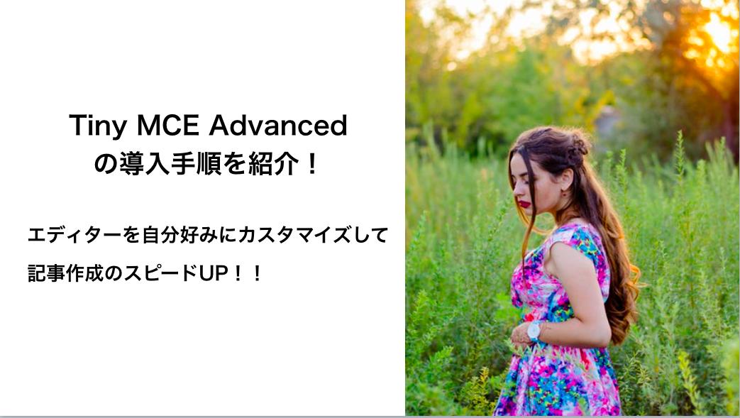 TinyMCE Advancedでエディタを自分好みにカスタマイズ!